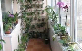 Полки для цветов на балконе своими руками