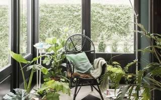 Зимний сад на лоджии как устроить